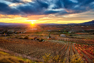 Rioja Alavesa, sunset.