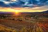 Rioja Alavesa, sunset. (hajavitolak) Tags: landscape paisaje atardecer sunset riojaalavesa rioja laguardia alava araba paisvasco countrybasque naturaleza nature nubes clouds sinespejo mirrorles evil sony sonya7ii sonya7m2 color tamron tamron247028