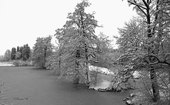 Bärengehege im Winter (Renata1109) Tags: baum wasser himmel park fluss insel schnee eis schwarzweis blackwhite aussicht ice snow sky water teich tümpel bayern poing bavaria deutschland germany outdoor
