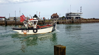 Rye Harbour 2017