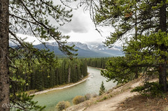 DSC_0817.jpg (Christa Claus) Tags: camper canadianrockies roundtrip banff alberta canada 2016 river holiday mountain