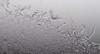 jan7 2018 7 (Delena Jane) Tags: delenajane frosty newfoundland ngc blackandwhite canada closeup pentaxart winter macro