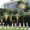 Img496528nx2 (veryamateurish) Tags: singapore armenianchurch armenianstreet
