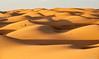 Nombril Mauritanien (Tonton-label) Tags: afrique d700 desert emotion mauritanie sable nikkor nikon paysage voyage