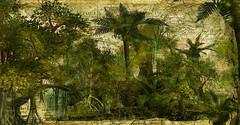 Jungle Sim I created for Dani # 1 (Thus Yootz_3) Tags: jungle sim palm map tropics