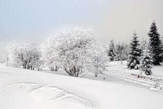 der Winter ist zurück..