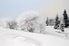 der Winter ist zurück / the winter is back (huetteberg) Tags: europa deutschland germany harz niedersachsen nationalpark winter schnee snow kalt zurück back outdoor himmel wald