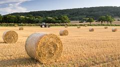 Eleven Bales (Lumix Snapper 18) Tags: 06ndgrad herefordshire lx5 polariser shenmore strawbales