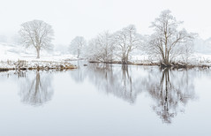 River Brathay - Snow Scene II (colinbell.photography) Tags: