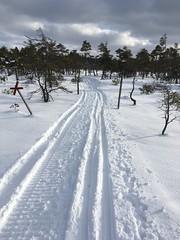 Bra dag för vintersport (Göran Nyholm) Tags: blängsmossen fotosondag fotosöndag vintersport fs180218