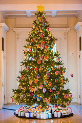 Christmas in San Marino (Thomas Hawk) Tags: alexisrael america california christmas christmastree huntington losangeles sanmarino southerncalifornia thehuntington usa unitedstates unitedstatesofamerica fav10