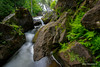 Spring cometh... (Earl Reinink) Tags: landscape waterscape waterfalls water fern stream river rocks rushing inglisfalls slowmotion motion nature earl reinink earlreinink htddturdta