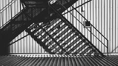an.origin.which.grows (jonathancastellino) Tags: toronto architecture abstract shadow grow poet poem leica m summicron zbigniewherbert stair stairs line lines ngc stretch