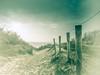 'Soulitude' (babs van beieren) Tags: hff beach sea seascape fence beachfence sand beachtrail trail fenced friday 7dwf saturdaylandscape