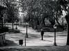 Singularity (Miguel.Galvão) Tags: people person street garden jardim público évora portugal alentejo preto e branco black white fotografia photography pedro miguel galvão pires
