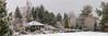 My winter garden (Magda Banach) Tags: canon canon80d b garden plants poland snow trees tree forest sky landscape winter