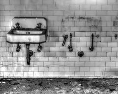 The Paw Print (that_damn_duck) Tags: blackwhite monochrome sink abandoned urbex urbanexplorer southcarolinamentalhospital tile pawprint cracks asylum hospital bw decaying blackandwhite