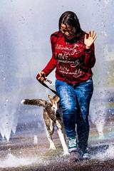 Momento de diversión (Alyaz7) Tags: nikond7200 lentenikonnikkorafs55300mm14556gdxedvr rawquality retrato portrait perro dog siberianhusky chica girl diversión fun agua water splash mojados wet corriendo running funny mascota pet fuentes waterfountain highspeed altavelocidad