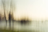 high-water.......... (Brigitte Lorenz) Tags: abstract icm riverrhine germany winter trees water landscape