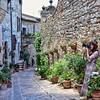 Spello (maresaDOs) Tags: spello umbria perugia street flower borgo borghi italia it italy