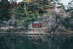 _MG_6397 (waychen_c) Tags: japan nara todaiji todaitemple mirrorlake kagamiike itsukushimashrine lake shrine 日本 奈良 東大寺 鏡池 厳島神社 2018関西旅行