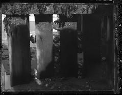 Sea (* Daniel *) Tags: wista wista45 wista45dx wistafield markdaniel markdanielphotocom polaroid polaroidtype55 type55 type55negative 4x5 4x5sheetfilm bw blackwhite blackandwhite mono monochrome monotone uk sea seaside film filmgrain grain
