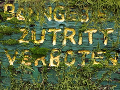 getting informed (vertblu) Tags: sign woodensign wood wooden inscription moss mossy overrun overgrown paint painted paintedwood oldpaint peelingpaint weatheredpaint weatheredwood ban yellow green petrol vertblu prohibition writing script scripture decay