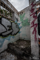 Ruins (J Explores) Tags: urban explore abandoned brisbane city queensland australia house tree sky night art old hot sexy babe travel tourer adventure camera building extreme danger photography flashback indoor architecture texture abstract surreal writing wall ceiling window thrill seeker australian decay infiltration place hacking dust rust broken wood dirty graffiti over grown lost forgotten scrap grass animal trains