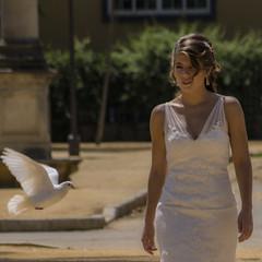... Dove ... (Lanpernas .) Tags: dove bride novia paloma street robado candid blanco mujer donna girl sevillana chica sevilla