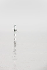 A place to perch (Niaic) Tags: sea water coast marine coastal maritime reflection post pole mooring bird birds perch roost perched perching white mist misty neutral negativespace blank minimal minimalist clean simple