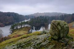 Tarn Hows, Lake District, England (Lux Aeterna - Eternal Light) Tags: tarnhows lakedistrict
