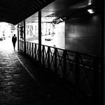 White collar - Tokyo, Japan - Black and white street photography thumbnail