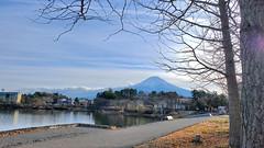 河口湖と富士山 (にく) Tags: kawaguchiko kawaguchilake mtfuji yamanashi japan fujisan landscape 河口湖 富士山 山梨県