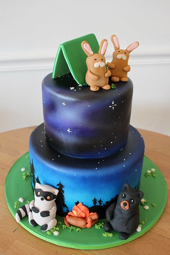 Outdoor Camping Sky Cake