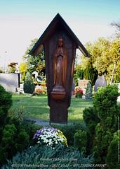 Paderborn/Elsen Friedhof PB-Elsen - 2017 PA151635-50%G1 (jean.paul_martin) Tags: paderborn elsen pbelsen friedhof friedhofpbelsen cimetiere
