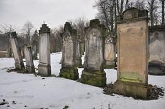 Jewish cementary (Grzesiek.) Tags: cmentarzżydowski jewishcementary kamiennagóra poland polska cmentarz grave kirkut tomb