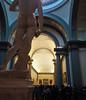 Galleria dell'accademia (saveriosalvadori) Tags: firenze galleriadellaccademia art architecture arte architettura david michelangelo