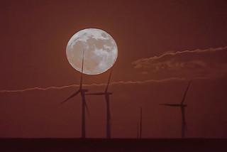 Super Moon moonrise