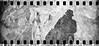 2017-08 - 097SR_15 (sarajoelsson) Tags: sprocketrocket blackandwhite bw panorama panoramic sprocketholes digitizedwithdslr toycamera ilford 135 35mm hp5 monochrome plasticlens filmphotography filmisnotdead believeinfilm filmshooter film wideangle lomography lomo xtol teamframkallning bnw svartvitt blackwhite sweden 2017 summer summertime august vacation skåne österlen sverige