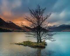 Twins (malcbawn) Tags: twins nationaltrust trees sunrise rock lake water mountains cumbria crummockwater lakedistrict outdoors uk landscapephotography