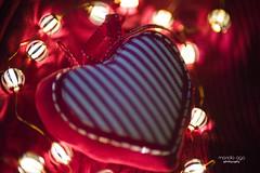 ♥ (mariola aga) Tags: helios helios40285mmf15 manual heart heartshape decoration fabric lights bulbs valentinesday art infinitexposure bokeh thegalaxy