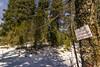 DSC_3860 (PakistanHighlands) Tags: snowfall nathiagali mushkpuri