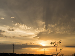Good ending. (Pablin79) Tags: sunset dawn dusk dramaticsky twilight sun moodysky silhouette backlit daybreak evening sky clouds light tree cloud sunlight city afternoon outdoors posadas misiones argentina sunrays