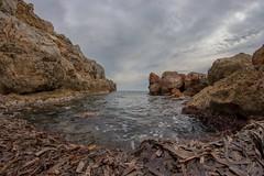 10. (Manupastor43) Tags: larenega mediterraneo fisheye oropesa samyang 8mm 200d eos
