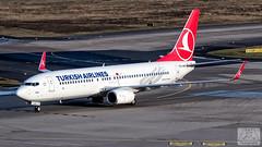Turkish Airlines | B738 | TC-JHZ (Zsolt Máté) Tags: b738 boeing cgn eddk koln tcjhz thy tk tkthy turkish