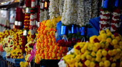 #Colors & Fragrance - Indian market - Flower garlands (Sriini) Tags: market typicalindianflowershopsflowergarlandsofmarigolds chrysanthemum roses jasmine india flower shops garlands marigolds hibiscus specialleaves colors fragrant sundaylights