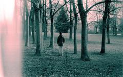 (Victoria Yarlikova) Tags: trees film analog 35mm zenit scan darkroom lightleak dust retro vintage filmcamera torino