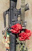 Rifle (photographyguy) Tags: louisiana northlouisiana rifle carnation flower vietnam memorial