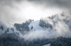When clouds disappear (VandenBerge Photography (Back again!)) Tags: oberiwalalp switzerland europe canon eos80d clouds winter snowscape snow forest alps season weather sky mountain nature light grey white niederstocken berneseoberland