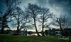 Morning Park (Sean Daniel) Tags: ocean sunrise aurorahdr bc canada gorge grass hdr inlet markii park picnic reflection reflective talltrees trees vanvouerisland victoria yyj
